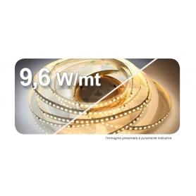 STRIP LED adesivo 3528 120LED/mt 5 mt 9,6W/mt 24VDC IP65 4000°K