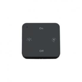Smart 1 Controller MEC DRIVER IR remote control 1 ch per EDC lamps