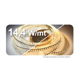 STRIP LED 2835 8X5000 14,4W/mt 24VDC IP65 6000-6500°K 120LED/MT