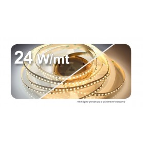 STRIP LED 2835 8X5000 24Wmt24VCD 2900-3200°K IP20 120LED/MT  UL